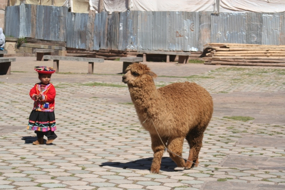 (Yes, I know this post is about Thailand, but the same situation applied in Peru and I'm just looking for an excuse to put some llamas in my blo