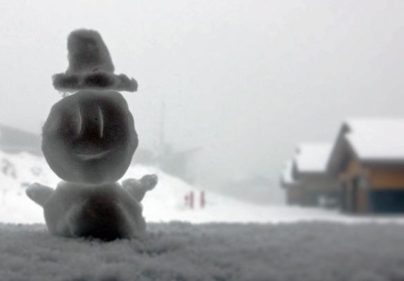 Building a snowman like a SIR!