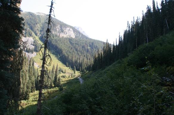Steep hillsides be damned!